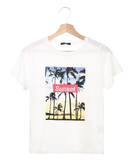 BOXロゴ転写プリント/Tシャツ(OUTLET)